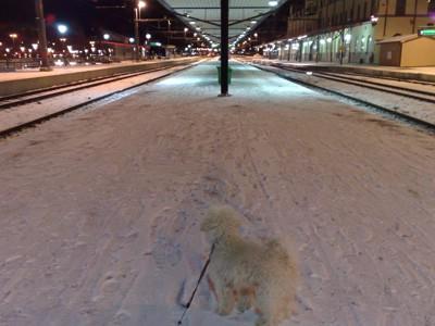 Gizmo väntar otåligt på tåget han med